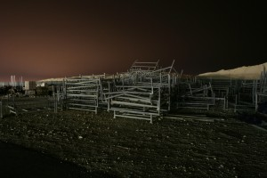Photographs taken in the middle of the night, at the Bahrain International Circuit.