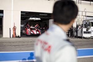 Driver Kazuki Nakajima looks over at his Toyota Hybrid car