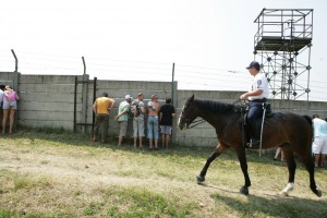 Fans without tickets try to catch a peek through the fences of the Hungarian Grand Prix